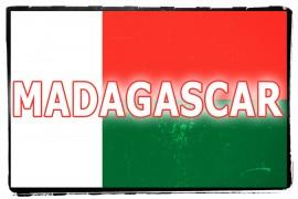 La Bandiera del Madagascar